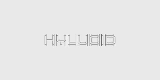 Hylucid™ Branding Project. Logo & Identity Design For Software Developers