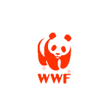 wwf the world wide fund for nature logo